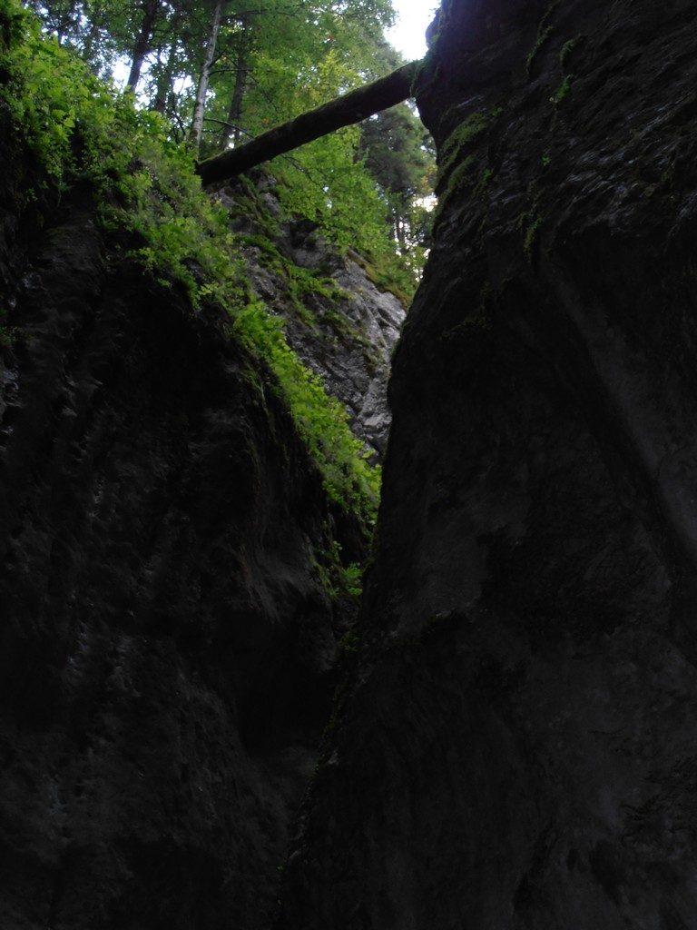 traseu la Canionul Sapte Scari, obiective turistice pe Valea Prahovei
