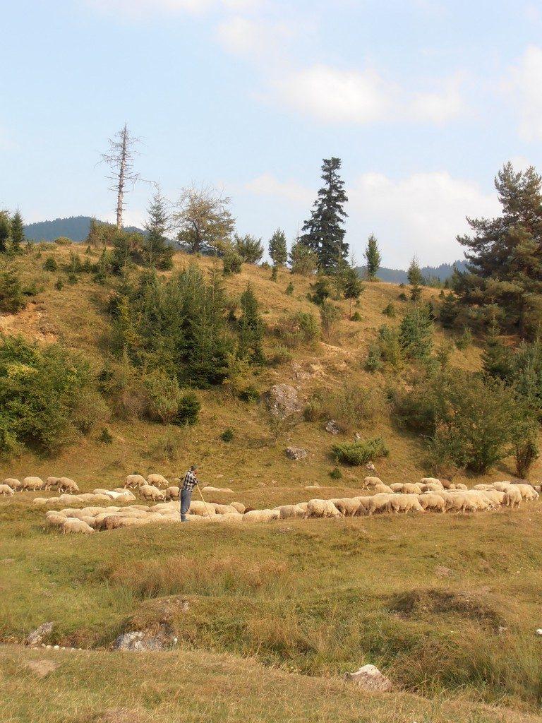 traseu la Canionul 7Scari, obiective turistice pe Valea Prahovei