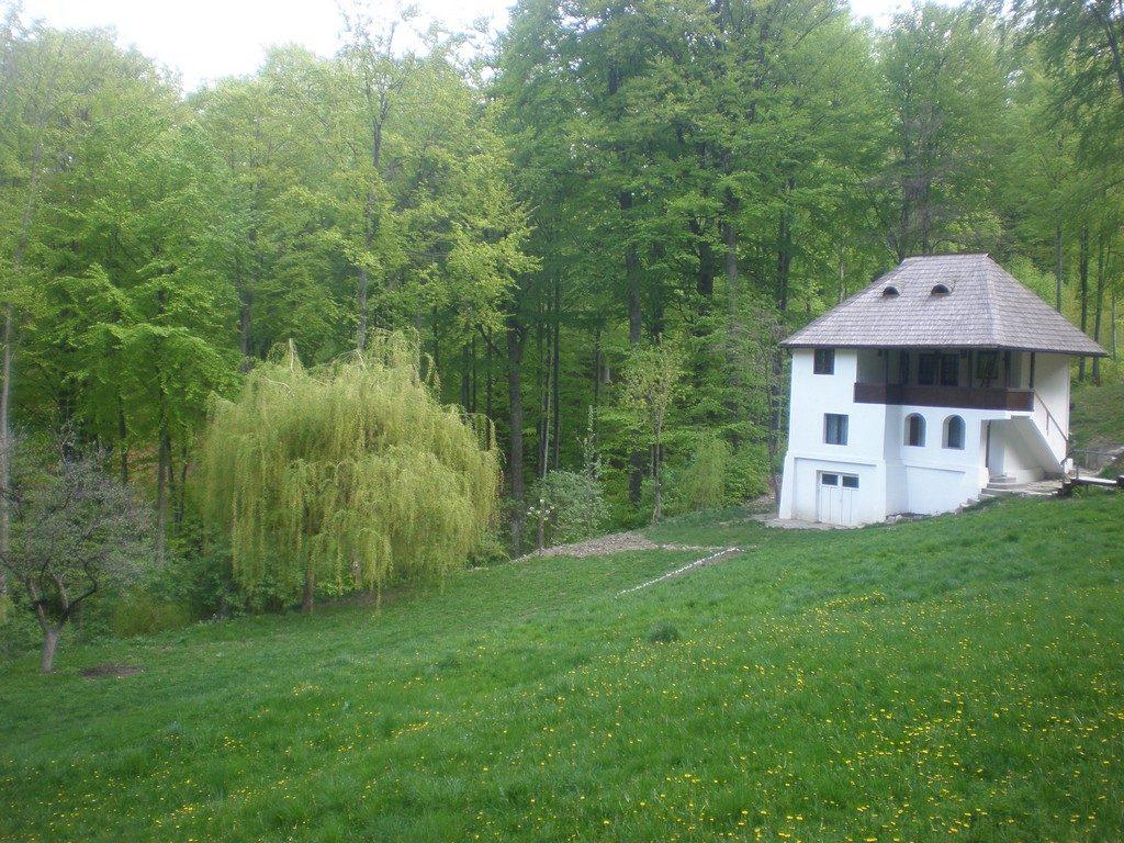 Traseu in Rezervatia Buila Vanturarita, obiective turistice Romania, Valcea, infoturism, concediu