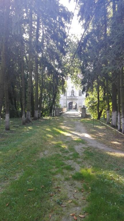 castelul-teleky-gornesti-7