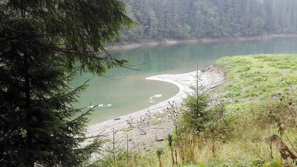 Lacul Scropoasa (3)