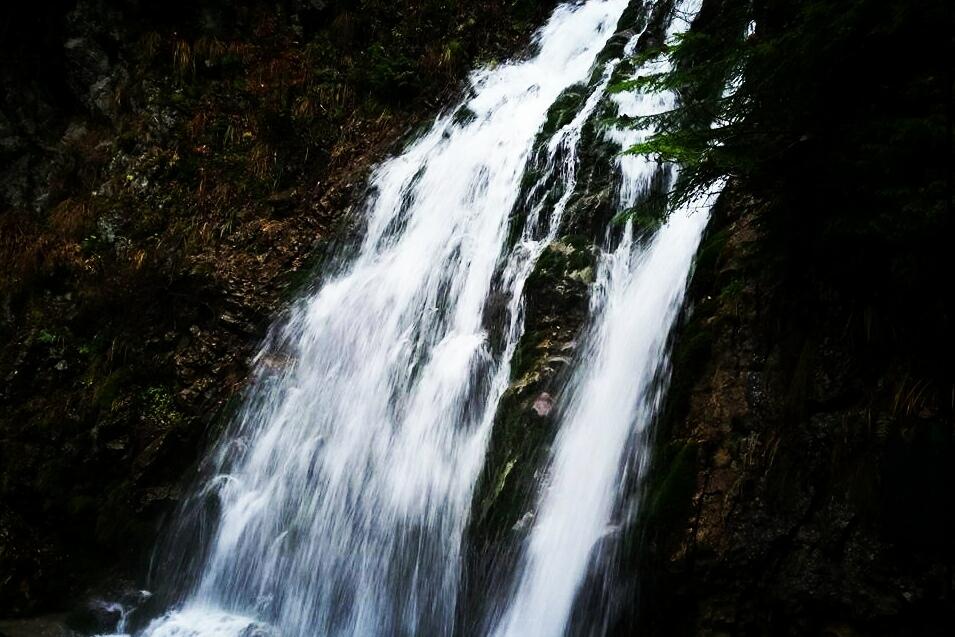 Cascada Urlatoarea, Busteni