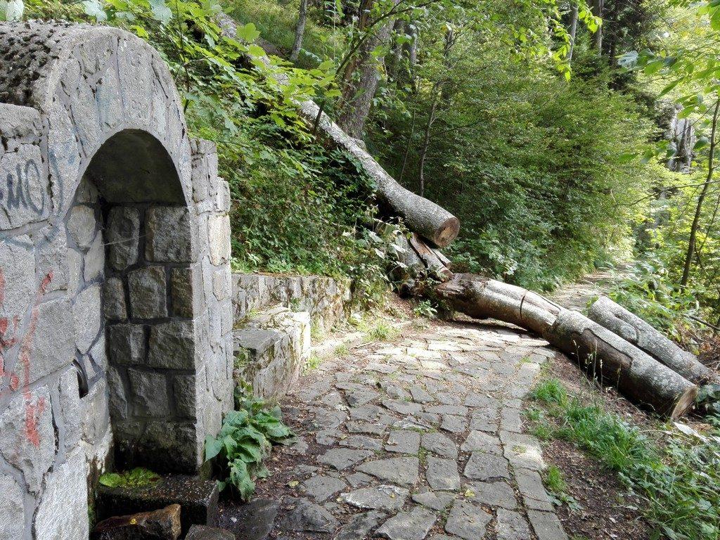 Poteca Regala, traseu care se poate face cu copiii, Sinaia, obiective turistice Romania (43)