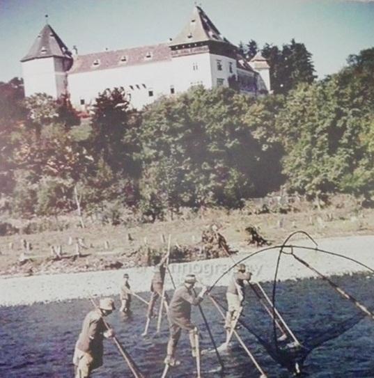 Castelul Kemeny din Brancovenesti (24)