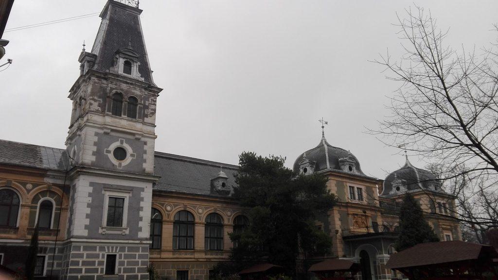 Palatul Cernovici, Macea