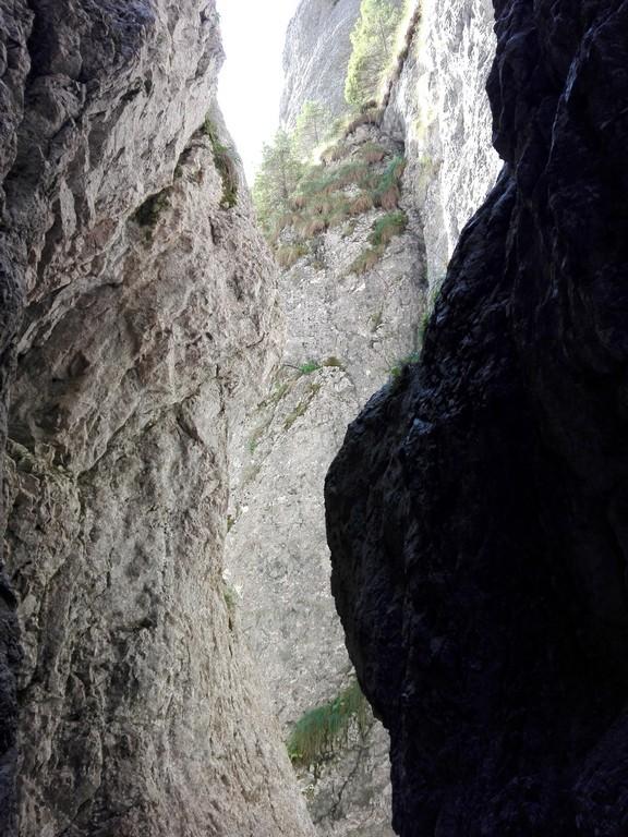 Canionul Horoabelor, Valea Horoabei, Cheile Horoabei, Padina, Bucegi, traseu munte, obiective turistice Romania (57)