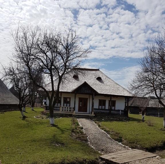 Conacul Golesti, Golestilor, muzeul Golesti, muzeul viticulturii si pomiculturii, muzeul satului Arges, obiective turistice Romania, ponei