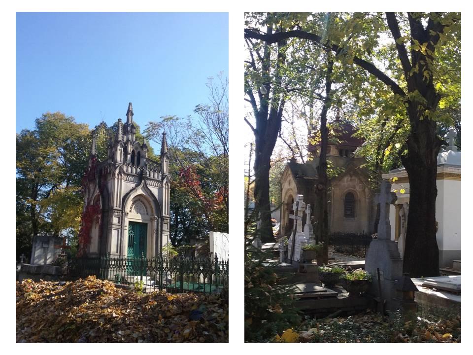 Cimitirul Bellu (2)