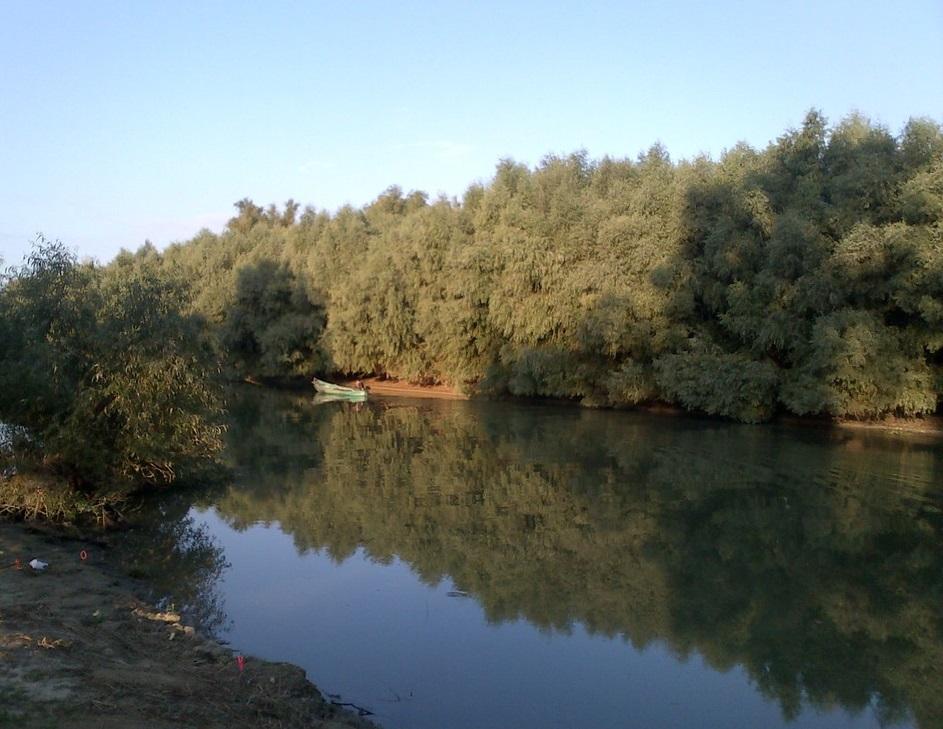 Chilia, Canalul Tataru
