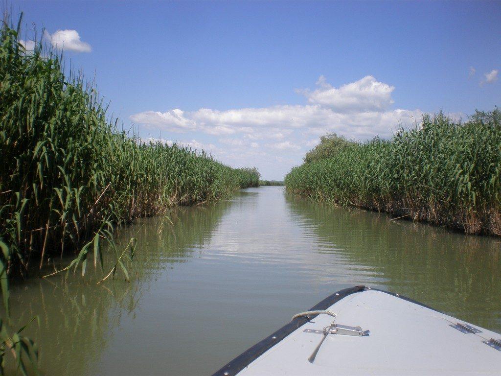 Delta Dunarii, obiective turistice in Romania, natura, infoturism