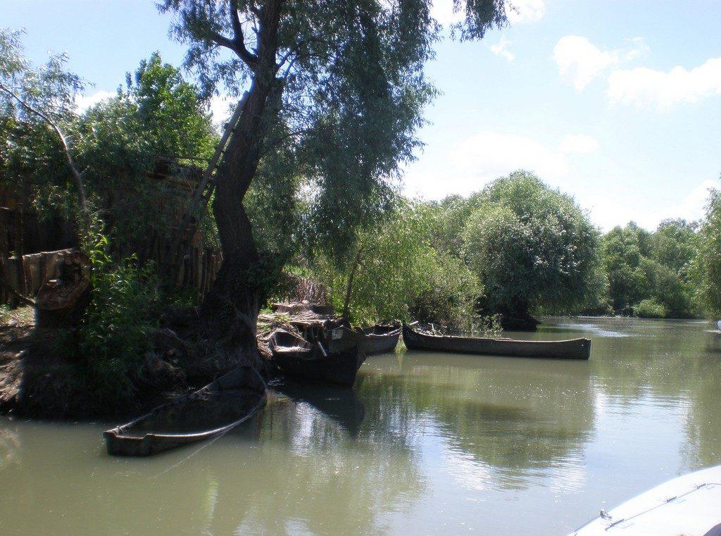 Delta Dunarii, cazare, infoturism, piscina, Canalul Sfantul Gheorghe