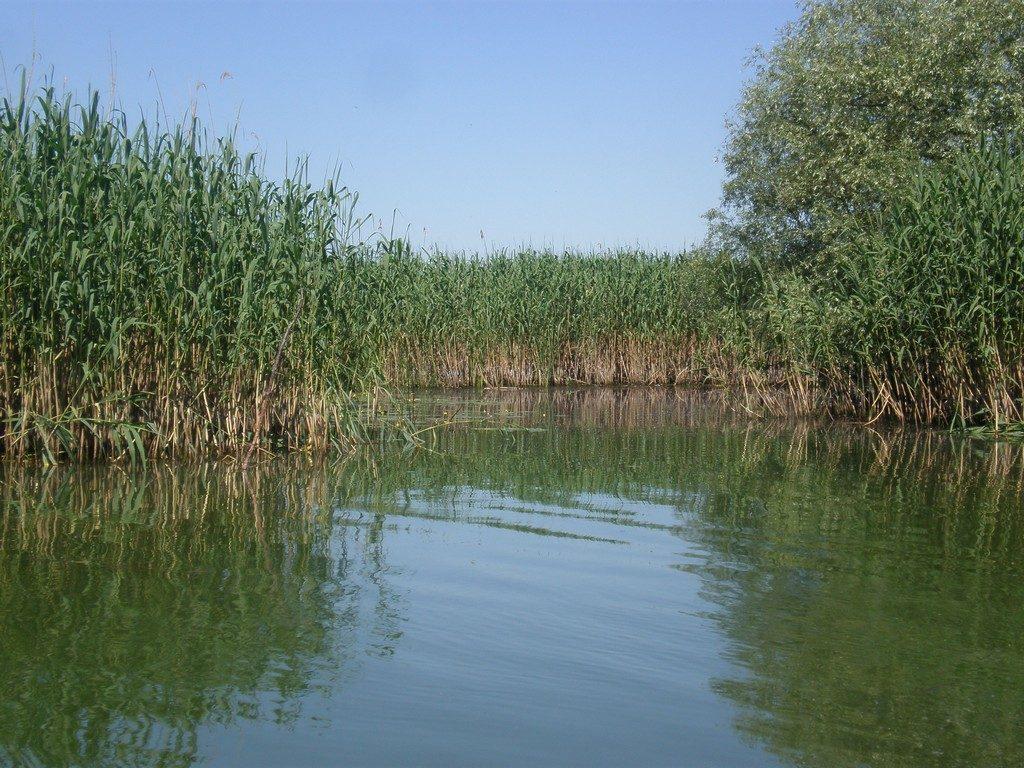 Delta Dunarii, Canalul Dranov, Cherhanaua Perisor, Marea Neagra, la pescuit