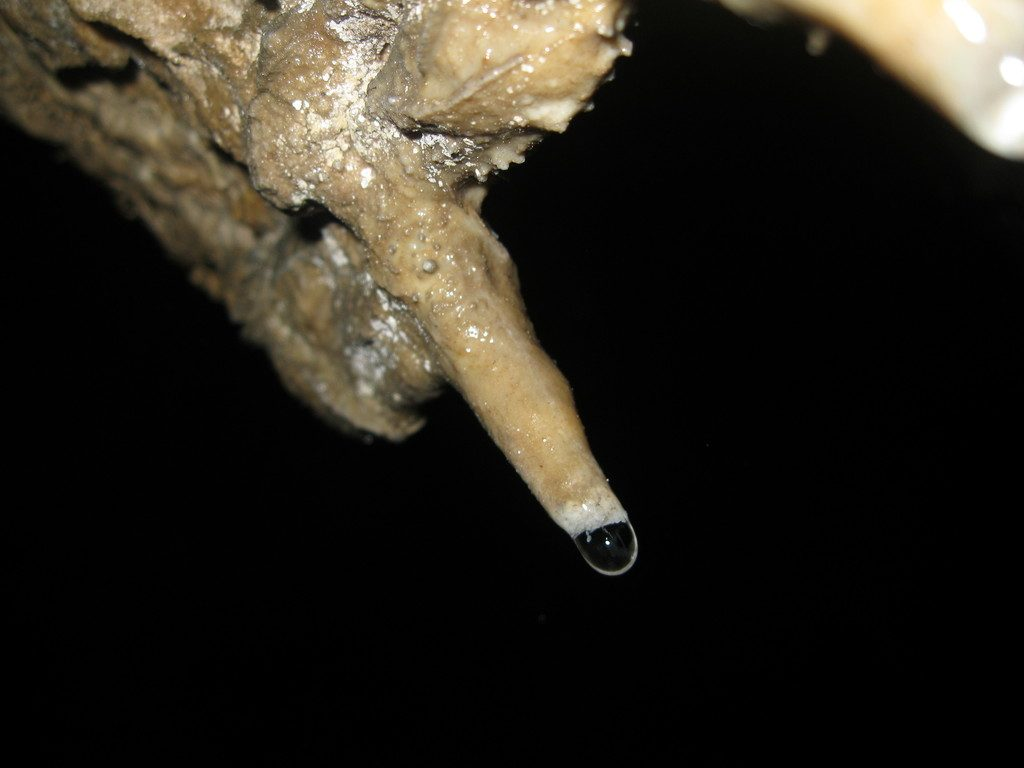 Pestera Topolnita (9)