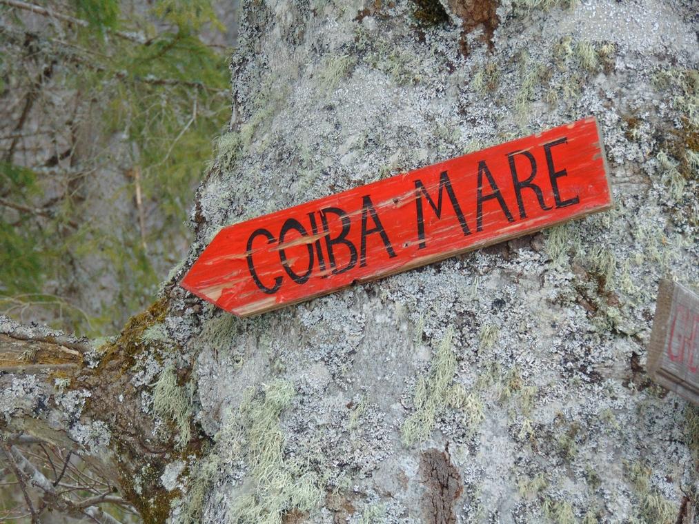 Pestera Coiba Mare, obiective turistice in Muntii Apuseni, Transilvania Romania