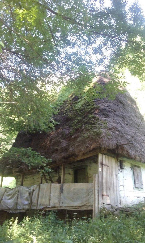 Cheile Rametului, traseu de munte Transilvania, Obiective turistice Romania, via ferrata, turism, concediu la munte