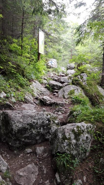 Cheile Zanoagei (16)Cheile Zanoagei, Cheile Orzei, 7 Izvoare, trasee de munte in Romania