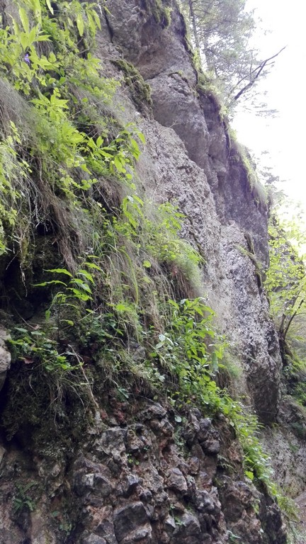 traseu Cascada Tamina, Predeal, Valea Prahovei, obiective turistice Romania