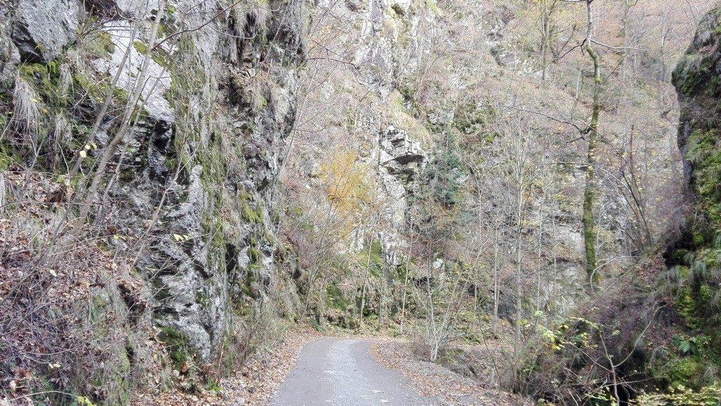 cascada-lotrisor-valea-oltului-8