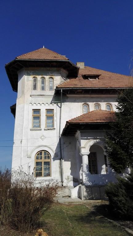Conacul Nicolae Titulescu, obiective turistice Olt (8)