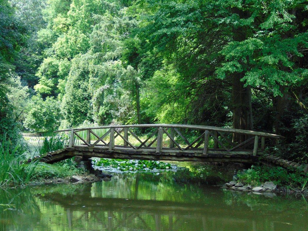 Gradina Botaica Simeria, Arboretum , OBIECTIVE TURISTICE TRANSILVANIA, ROMANIA, parc dendrologic