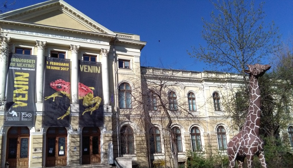 Muzeul Antipa, obiective turistice in Bucuresti