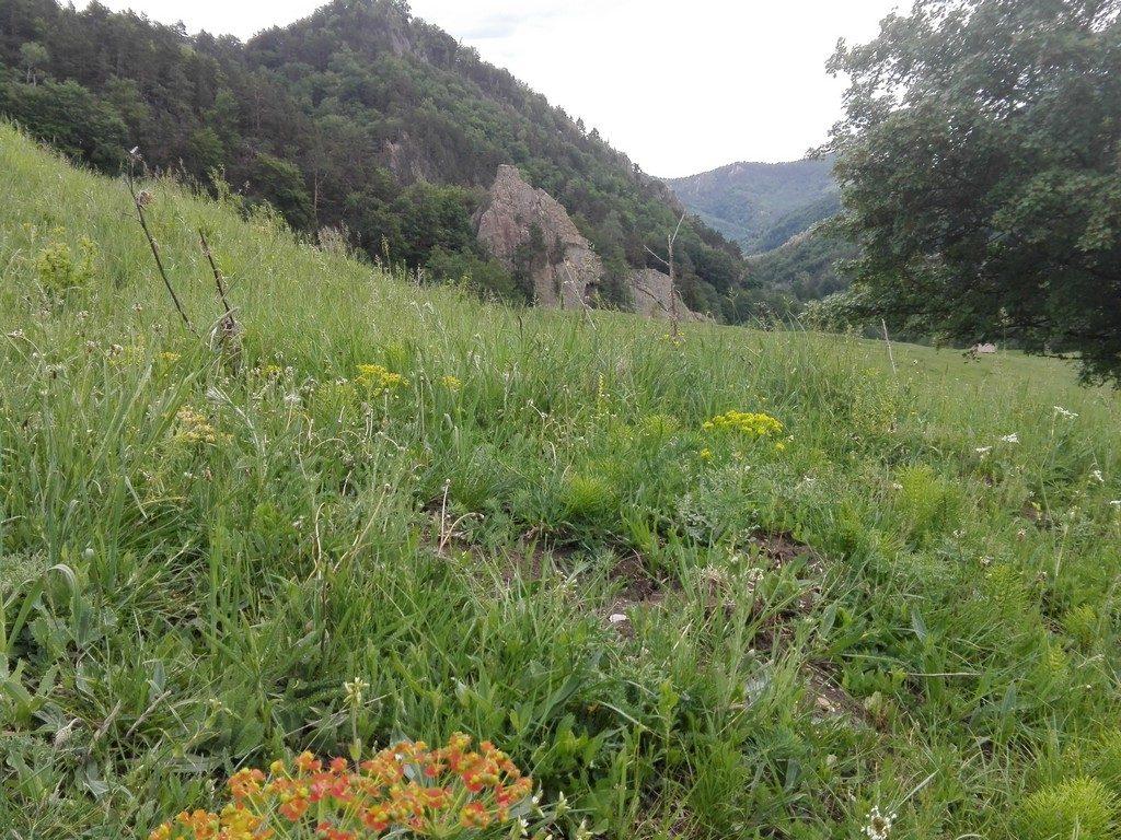 complexul schiturilor rupestre de la Bozioru, Dionisie Torcatorul, obiective turistice in judetul Buzau, Romania