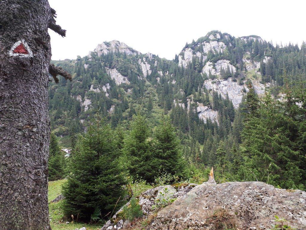 traseu cu copiii la Cabana Malaiesti, Bucegi, Bucsoiu Mare, Omu, cabana Diham, Rasnov, traseu munte, obiective turistice Romania