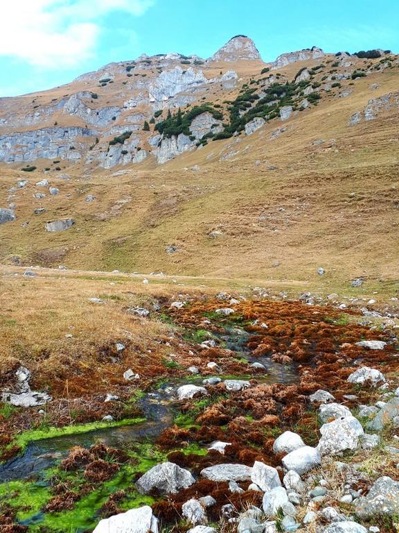 Bucegi, traseu spre cascada doamnei, doamnelor, obiective turistice Romania, Gura de rai