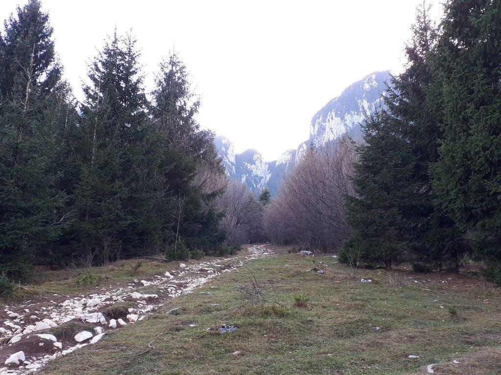 traseu de o zi din Bucuresti, muntii piatra craiului, varful tamasu mare, coltul chiliilor, plaiul foii, zarnesti, obiective turistice brasov, romania, plaiul runcului