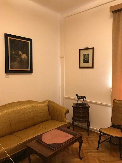 Muzeul-profesor-doctor-Victor-Babes-obiective-turistice-Bucuresti-Romania-