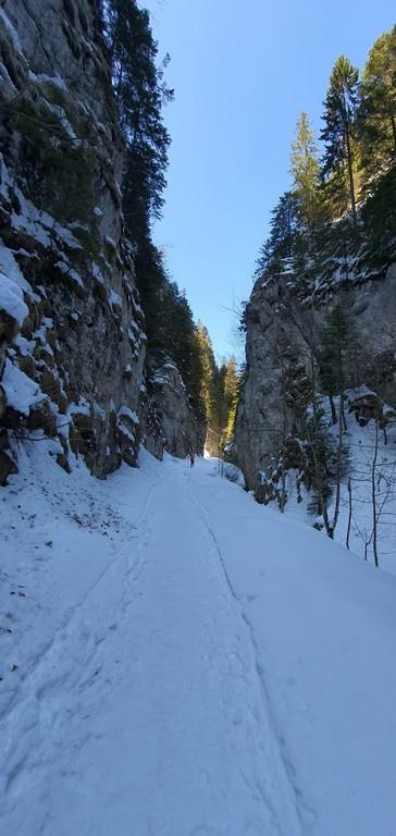 Prapastiile Zarnestiului, traseu iarna Cabana Curmatura, Piatra Craiului, Zarnesti, munte, obietive turistice Romania