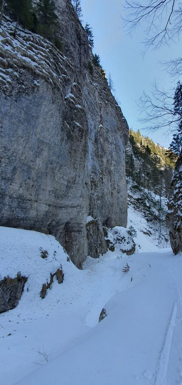 Prapastiile Zarnestiului, traseu iarna Cabana Curmatura, Piatra Craiului, Zarnesti, munte, obietive turistice Romania (35)