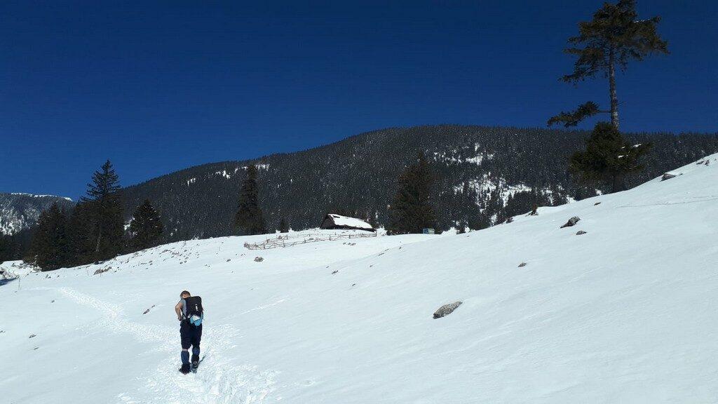 traseu iarna Cabana Curmatura, Piatra Craiului, Zarnesti, munte, obietive turistice Romania