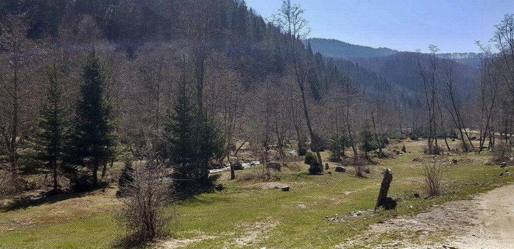 Valea Badenilor off camping